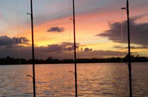 fishingrods