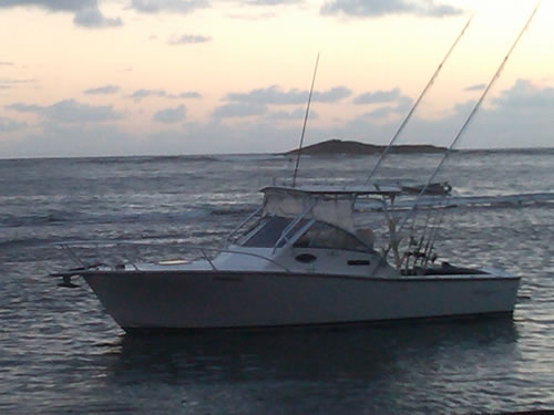 About us puerto rico sport fishing charters for Puerto rico fishing charters
